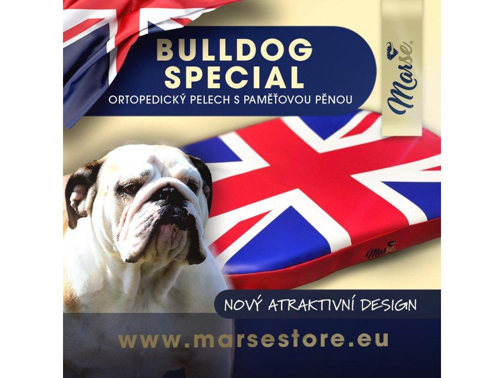 1080x1080 bulldog spec